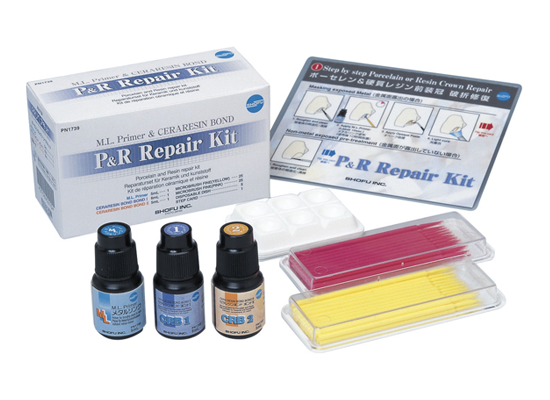 P&R Repair Kit